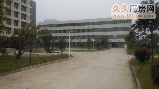 武汉经济开发区康师傅旁底层620m2框架厂房-图(1)