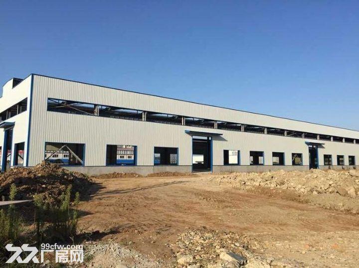 高新区奔驰大道10000平米厂房出租-图(5)