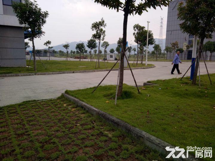 独门独院产权面积25000平米1400元1平米-图(3)