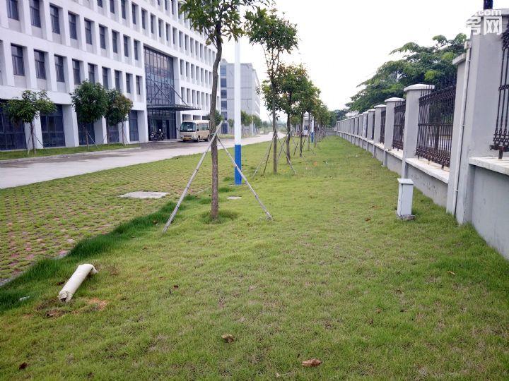 独门独院产权面积25000平米1400元1平米-图(4)