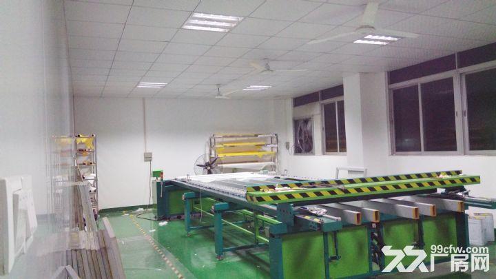 精装修厂房出租有700无尘车间-图(6)