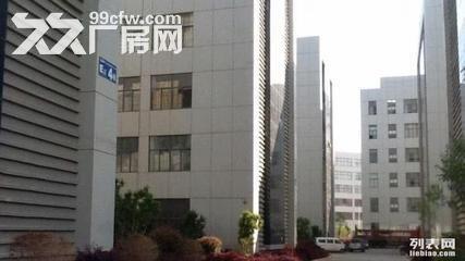 1500平标准厂房出租10元-图(2)