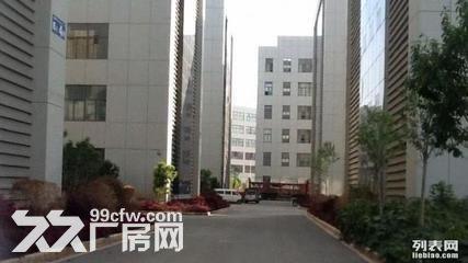 1500平标准厂房出租10元-图(4)