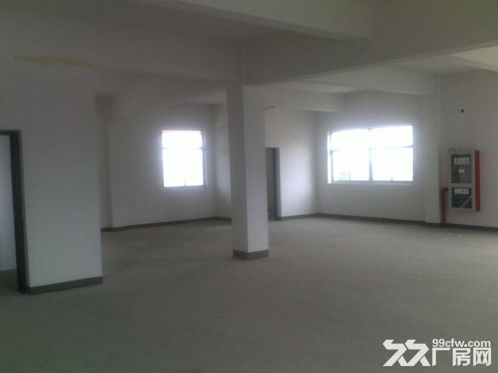 丽华280平方小型厂房也可做仓库-图(1)