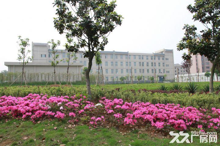 襄阳新鑫制衣厂招商公告-图(6)