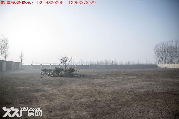 无立柱钢架结构车间30m*80m占地30亩-图(5)
