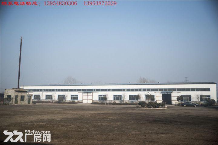 无立柱钢架结构车间30m*80m占地30亩-图(7)