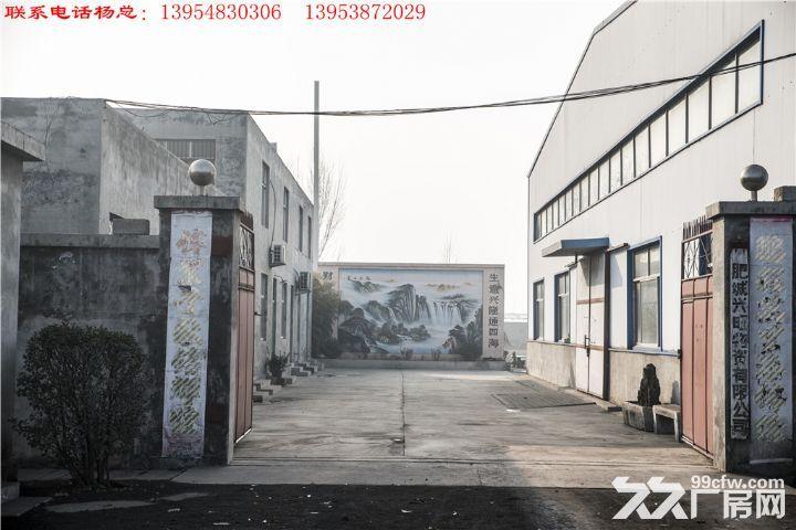 无立柱钢架结构车间30m*80m占地30亩-图(8)