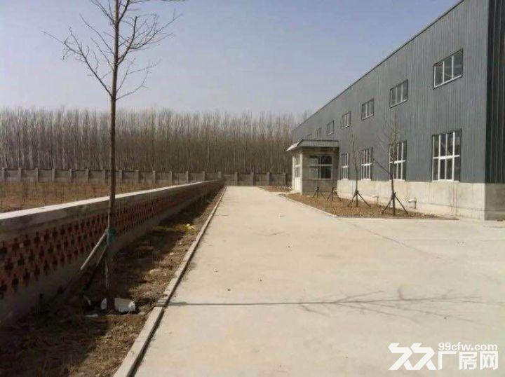厂房土地出租土地面积18800平方米-图(3)