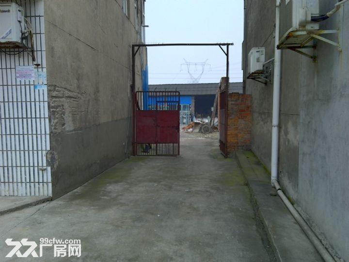 武陵区南湖村S306省道边厂房出租-图(5)