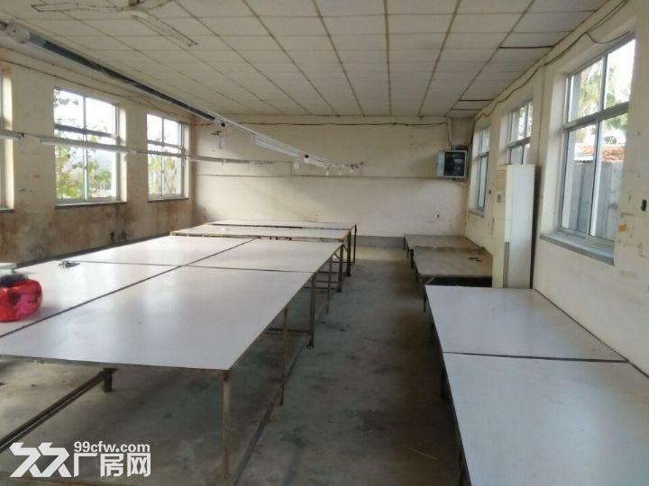 海阳市海天路中段路北厂房出租-图(1)