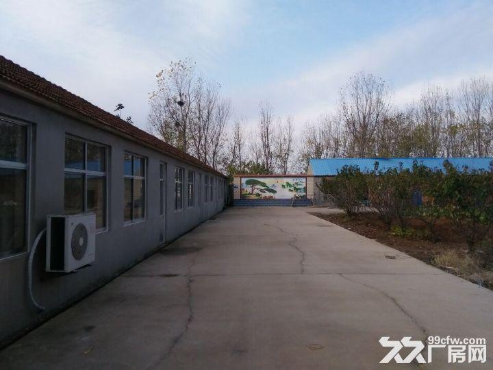 海阳市海天路中段路北厂房出租-图(5)