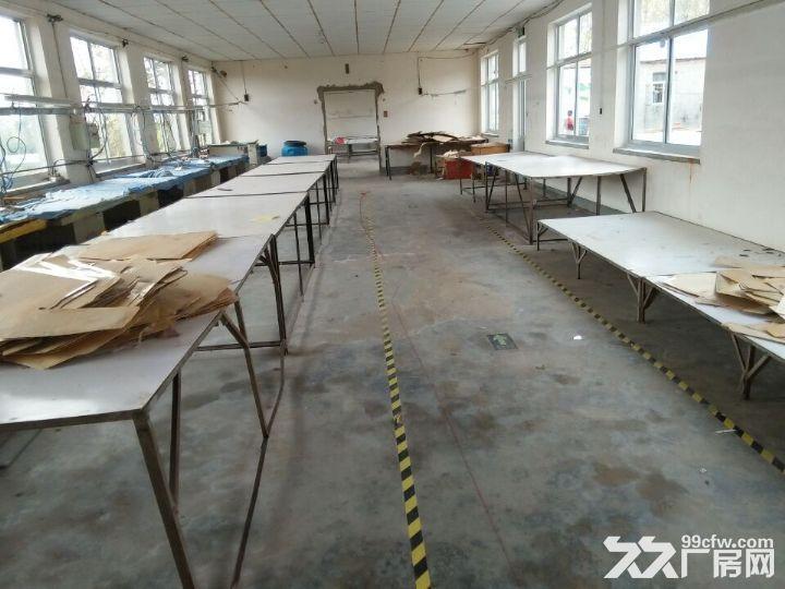 海阳市海天路中段路北厂房出租-图(3)