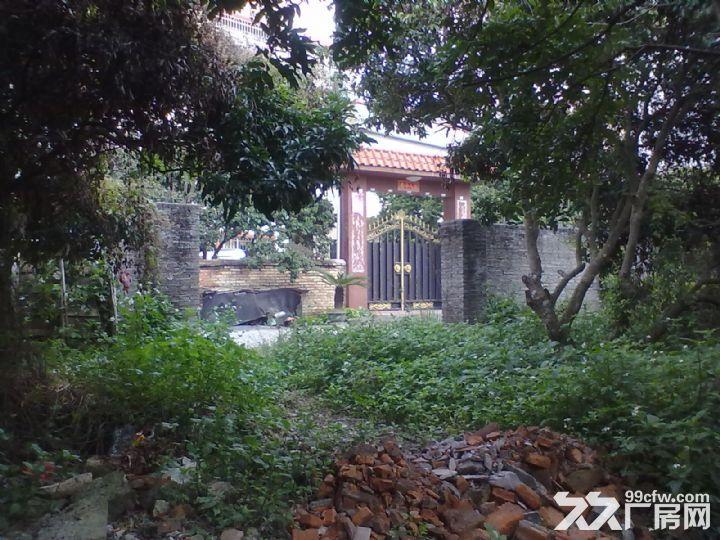 从化城区横江大道附近5亩平地果园宅基地房屋永久转让-图(6)