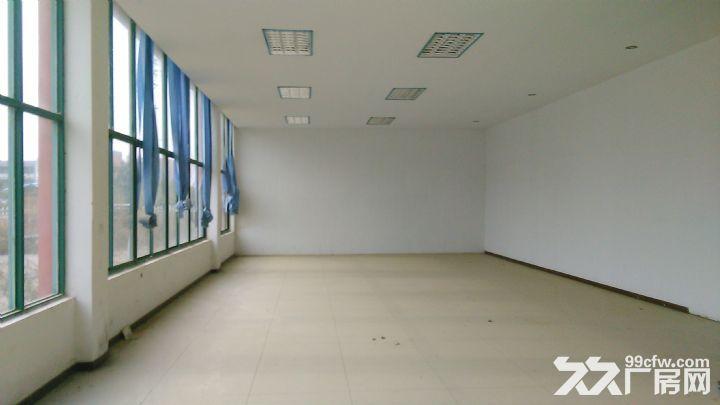 5500平方米厂房出租,位于宁溧路旁,高10米,厂房4500-图(4)