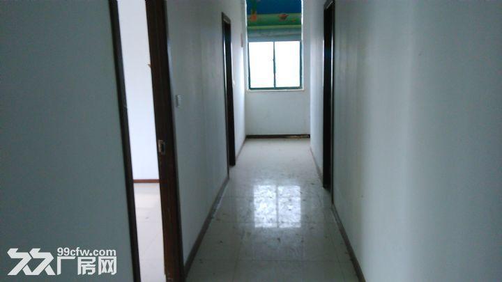 5500平方米厂房出租,位于宁溧路旁,高10米,厂房4500-图(5)