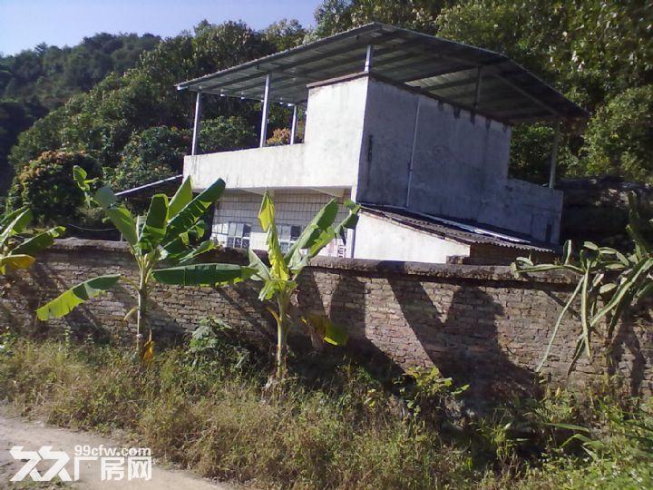 从化城郊城康电站附近30山地果园楼房永久转让-图(6)