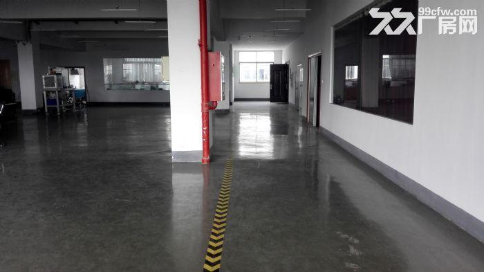 新动力工业园750平3层环氧地坪标准厂房-图(3)