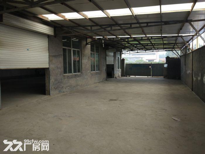 泰山区宁家结庄出租厂房-图(3)