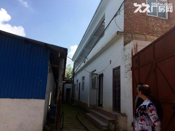 农大后门2000平米厂房优租-图(3)