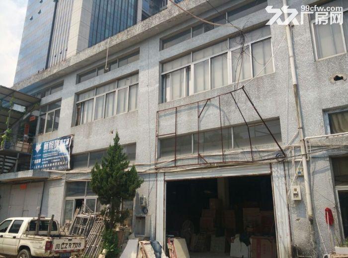 晋安区大型办公仓库可分割-图(4)