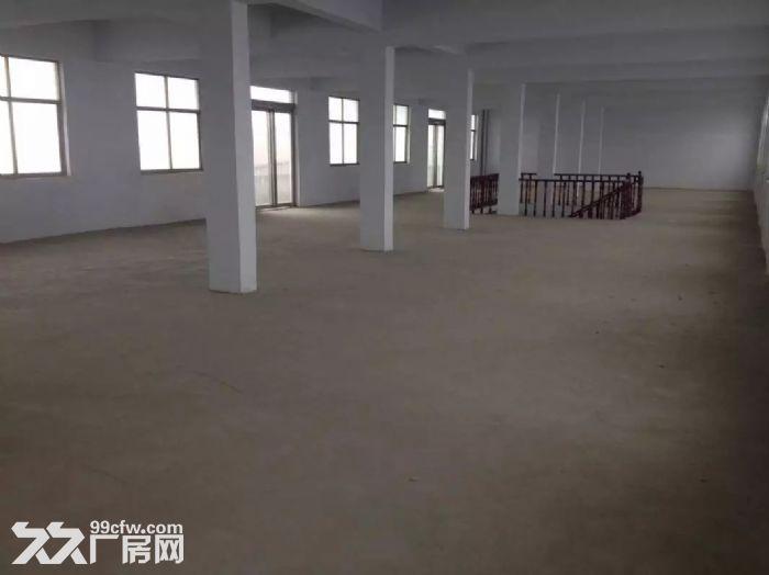 河南省周口市商水县谭庄乡房屋及院落出租-图(5)