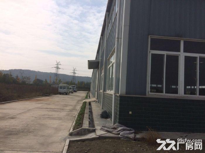 游仙区松桠1号路出租10000平方厂房加空坝子10000平方-图(8)