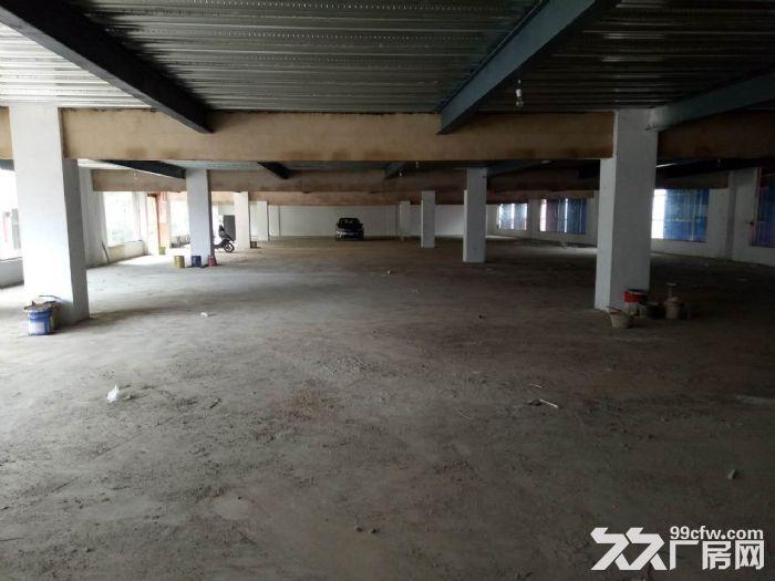 西南商贸城附近2000平米左右仓库出租欢迎来电咨询-图(2)