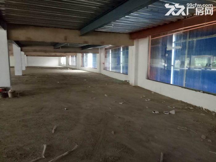 西南商贸城附近2000平米左右仓库出租欢迎来电咨询-图(3)