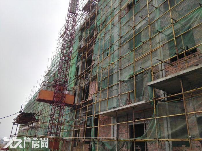 永州给力电子有限公司厂房整体出租-图(3)