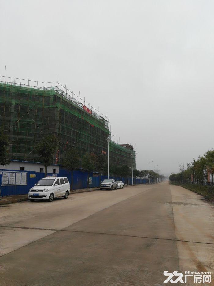 永州给力电子有限公司厂房整体出租-图(4)