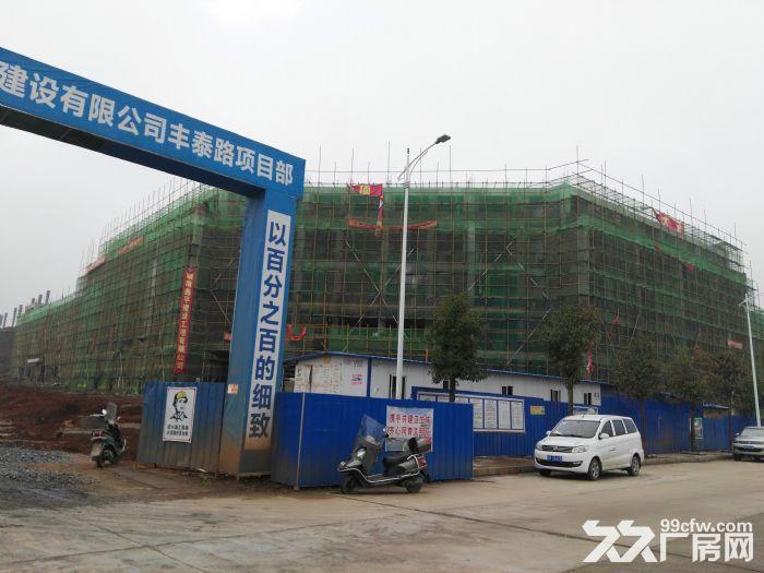 永州给力电子有限公司整体厂房出租-图(1)