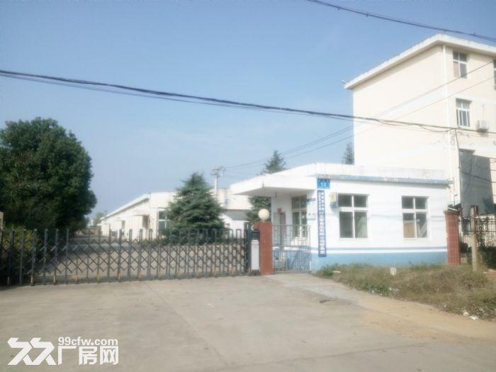 云梦县城关经济开发区厂房招租-图(2)