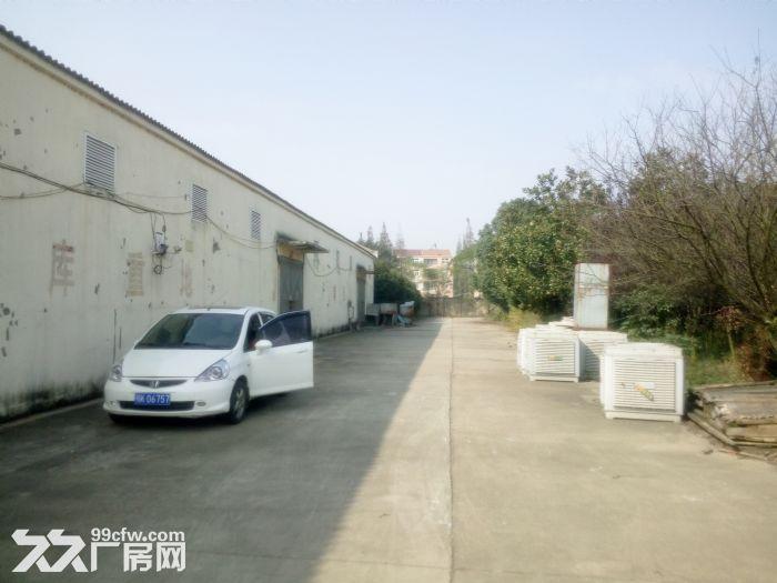 云梦县城关经济开发区厂房招租-图(3)