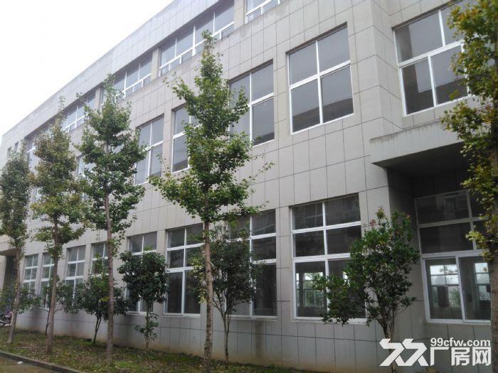 舒城全新优质厂房2000−10000平低价租赁-图(1)