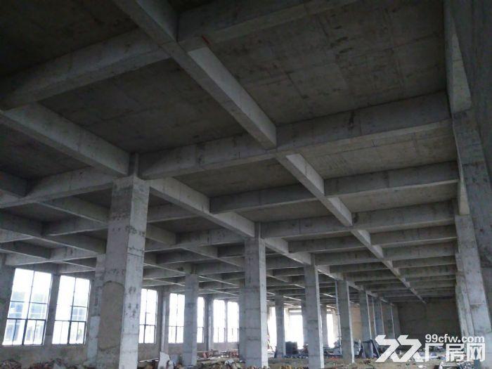 舒城全新优质厂房2000−10000平低价租赁-图(3)
