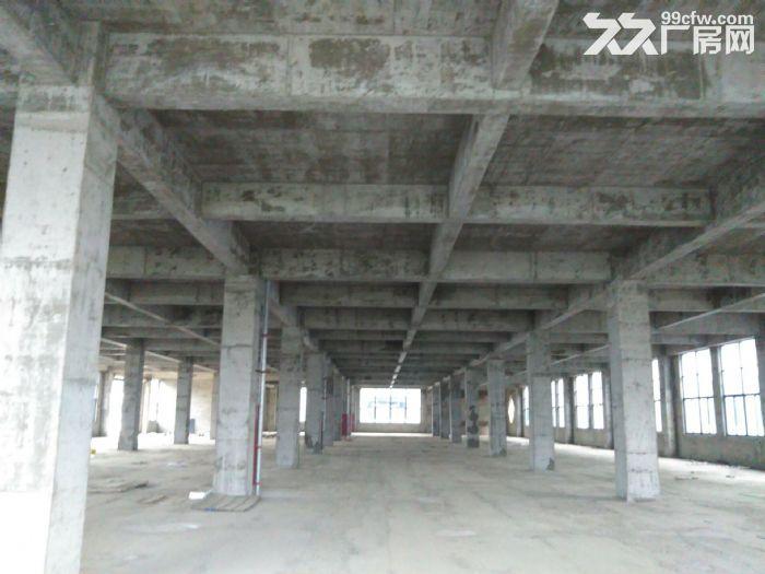 舒城全新优质厂房2000−10000平低价租赁-图(4)