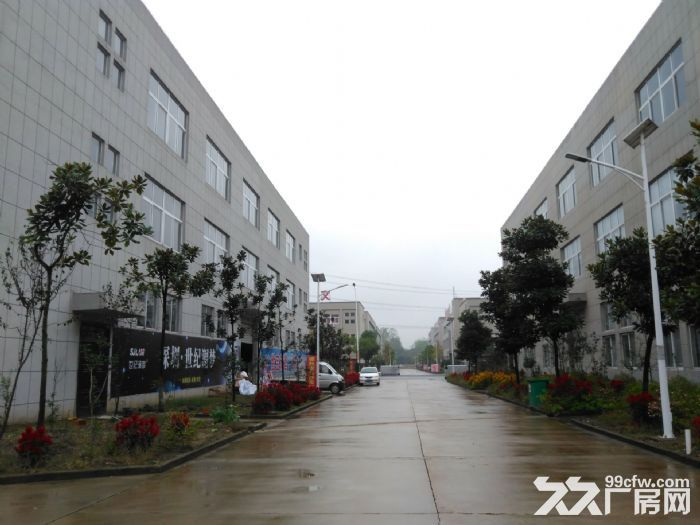 舒城全新优质厂房2000−10000平低价租赁-图(5)