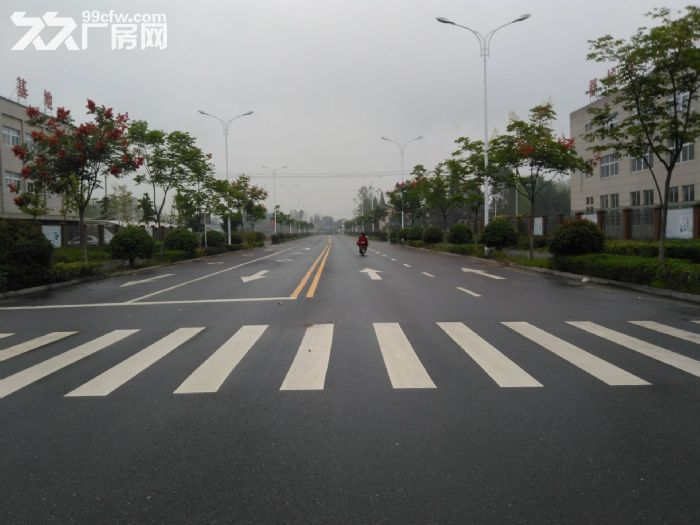 舒城全新优质厂房2000−10000平低价租赁-图(6)