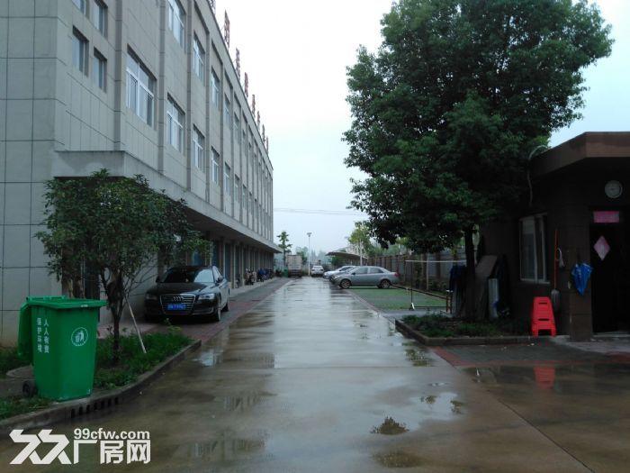 舒城全新优质厂房2000−10000平低价租赁-图(8)