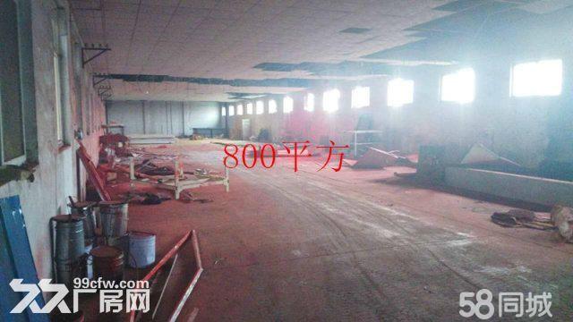 坊子新区好位置优质厂房出租-图(5)