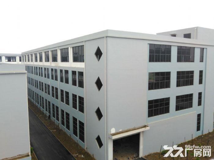 舒城标准化产业园2000−10000平方招租-图(5)