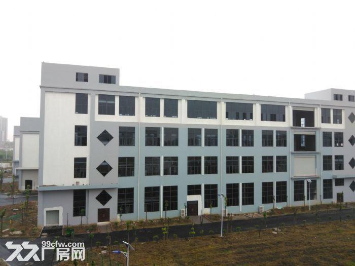 舒城标准化产业园2000−10000平方招租-图(7)