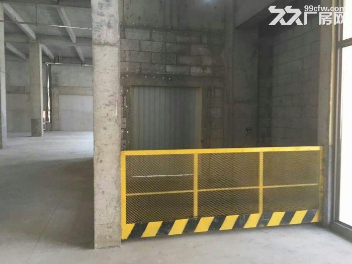 800㎡—7000㎡标准厂房出售证件齐-图(1)