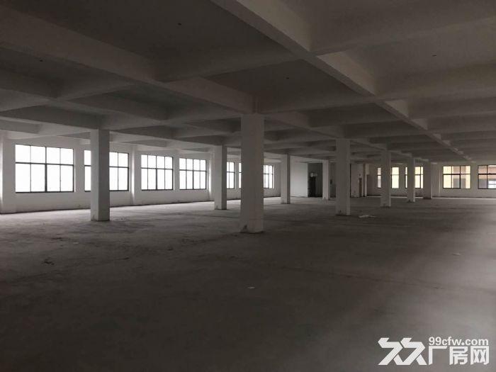 出租高新区机器人智能装备产业园厂房仓库-图(3)