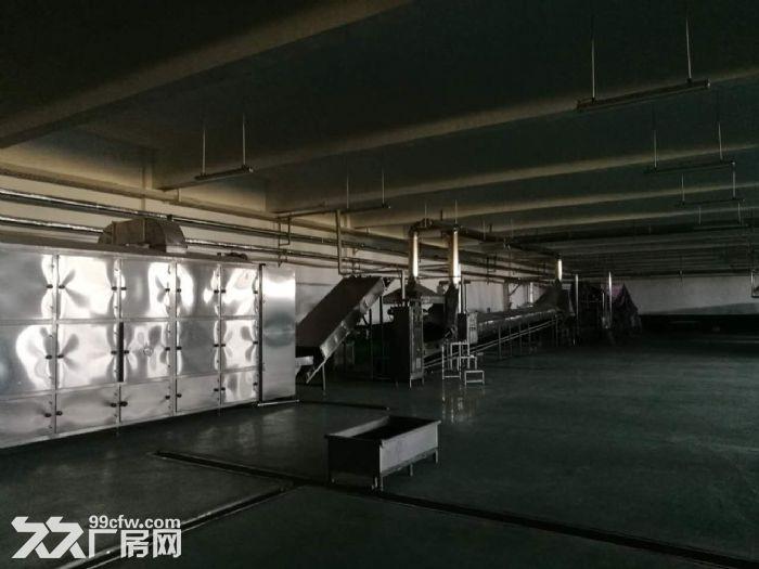 全新厂房招租、招商......-图(5)
