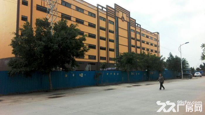独院全新工业厂房20400平米出租可分租-图(1)