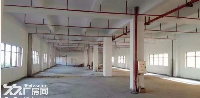 独院全新工业厂房20400平米出租可分租-图(2)