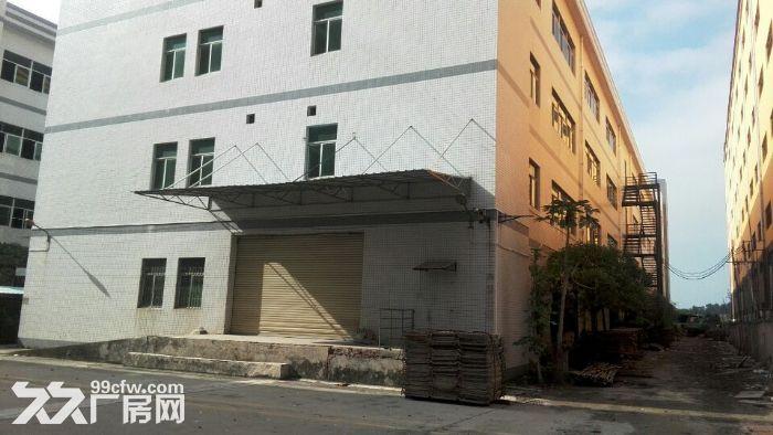 独院全新工业厂房20400平米出租可分租-图(3)