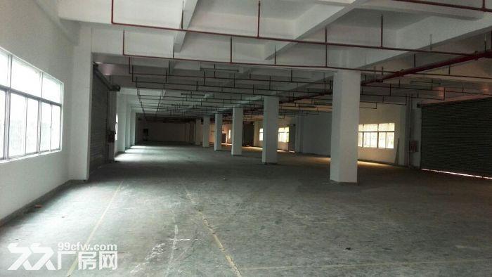 独院全新工业厂房20400平米出租可分租-图(4)